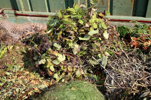 Abfallvermeidung Kompostierung